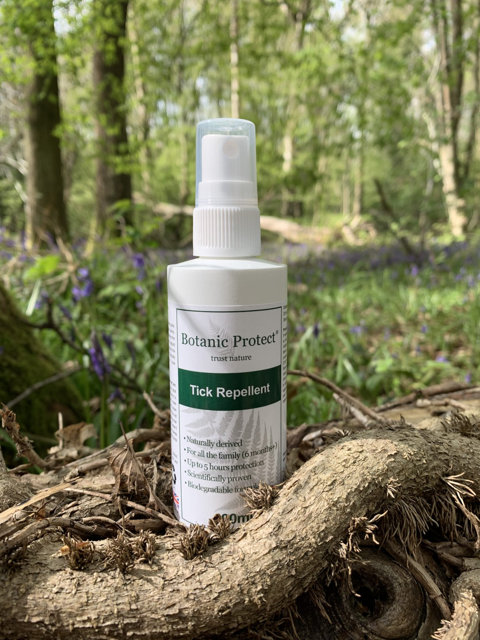 A photo showing the need to use Botanic Protect tick repellent when in the bluebell woods